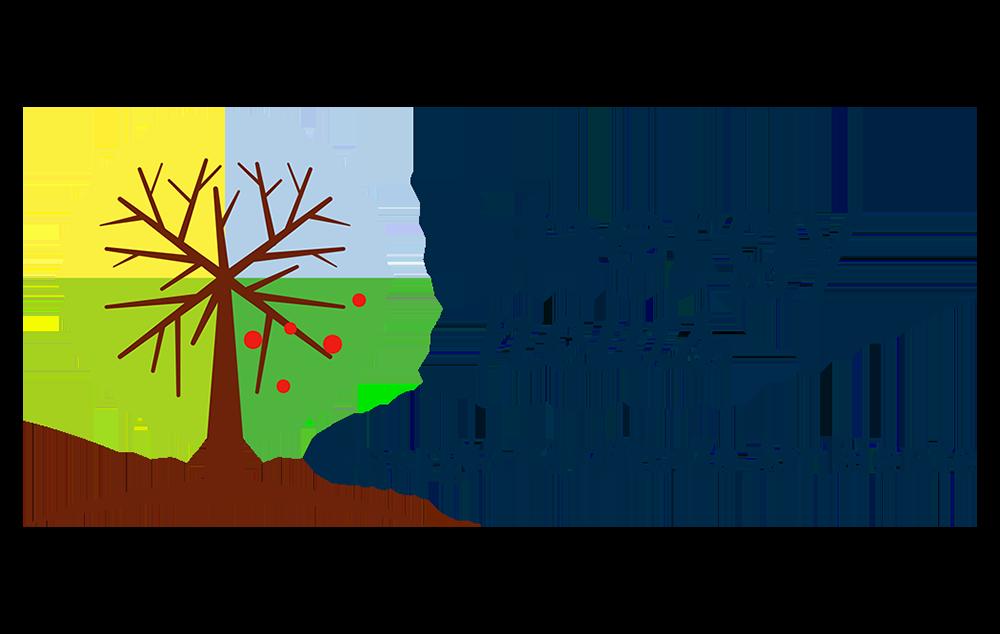 """IL NUMERO DI NOVEMBRE/DICEMBRE DI """"ENERGY NEWS"""", IL MAGAZINE DI ENERGIA ETICA"""
